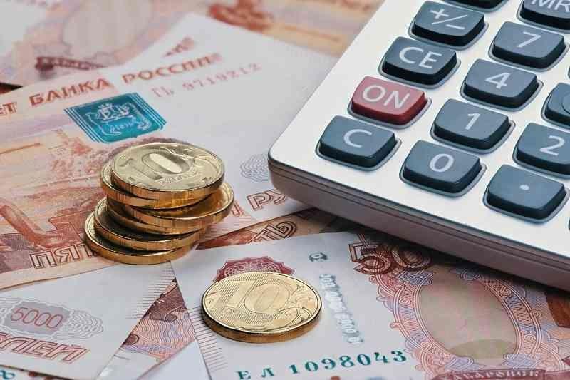 Южноуральцы подали 123 000 заявлений на путинское пособие