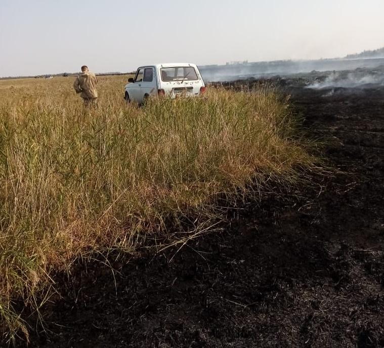 В районе значительно увеличилось количество лесных пожаров
